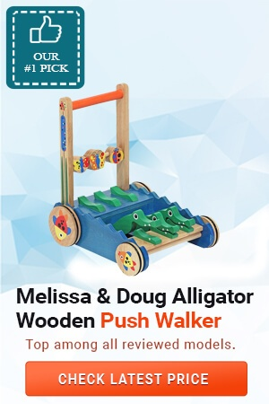 Best Baby Push Walkers