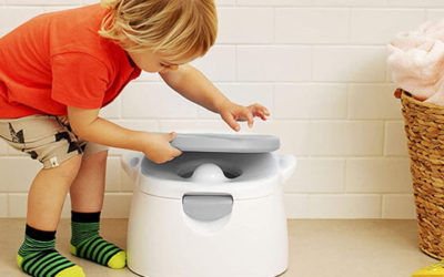 Best Potty Training Seat in 2020 – Great Options for Your Child
